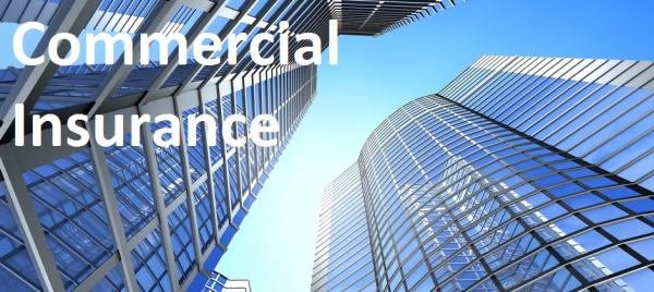 Why You Should Review Your Commercial Insurance Regularly