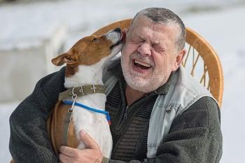 bigstock-Cute-Basenji-Dog-Licks-Master--345314995